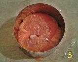 gm-medaglioni-salmone-stampo-gallery-5