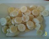 gm-semifreddo-banane-affettate-gallery-3